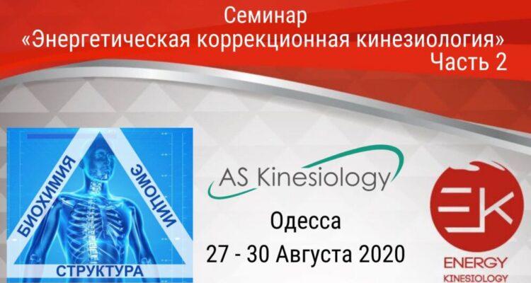 Семинар «Основы энергетической кинезиологии». Часть 2 Одесса 27-30 августа 2020