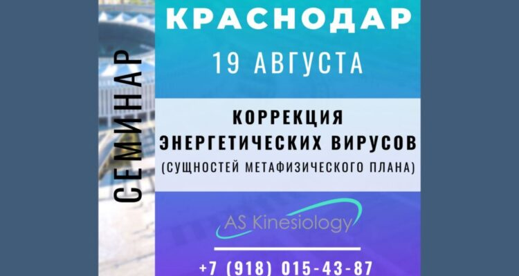 Семинар «Коррекция Энергетических вирусов». Краснодар. 19 августа 2020