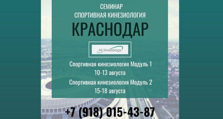 Семинар «Спортивная Кинезиология». Краснодар. 10-18 августа 2020